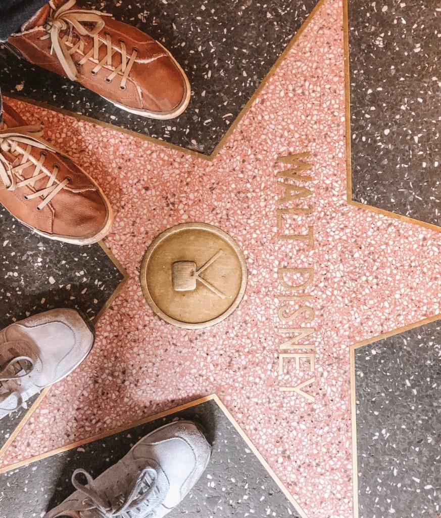 Walt Disney zijn ster op de Walk of Fame